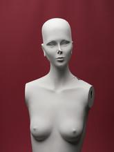 Damaged Female Mannequin