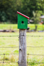 Bright Green Birdhouse Sitting On The Top Of A Single Centered Fence Post