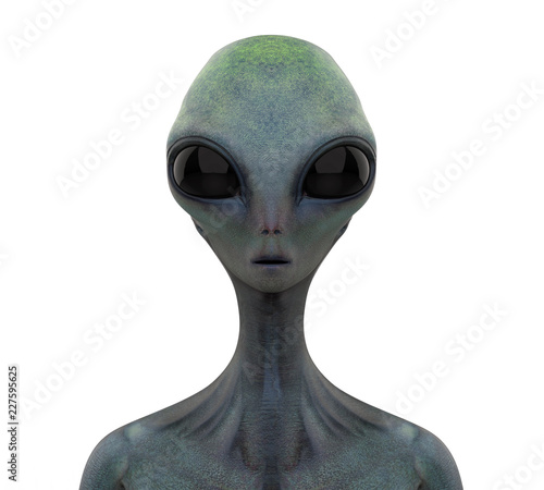 Alien Creature Isolated Poster Mural XXL