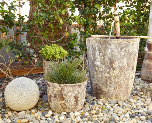Foto op Plexiglas Tuin Water fountain and succulents in xeriscape garden