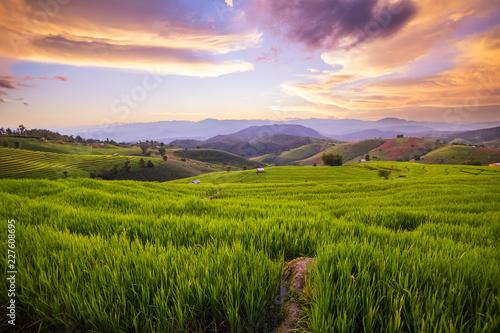 Fotobehang Platteland Small house and rice terraces field at pabongpaing village rice terraces Mae-Jam Chiang mai, Thailand