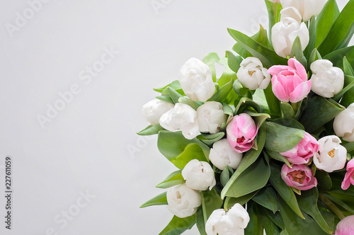 Fotografie, Obraz  A closeup of white and pink tulips were used as a Spring interior decoration