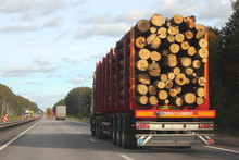 Heavy Truck Transports Logs On A Red Semi-trailer Goes On A Suburban Asphalt Highway Road On A Summer Day Against A Green Forest And Blue Sky With Clouds - Trade And Timber Exports In Europe