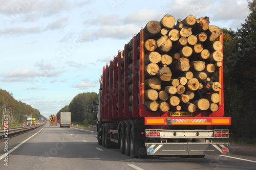 Heavy truck transports logs on a red semi-trailer goes on a suburban asphalt hig Tableau sur Toile