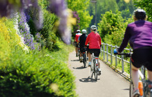 Group Of Sportive Man Cycling In Sunny Park In Hot Summer Day. Switzerland, Europe