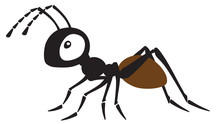 Cartoon Ant Insect . Side View...