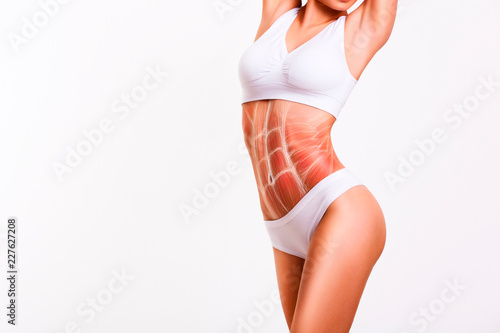 Woman's abs muscle and body structure Wallpaper Mural