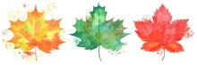 Watercolor Illustration Autumn...