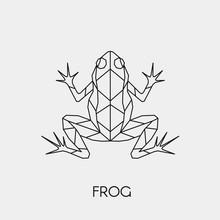 Geometric Frog. Polygonal Line...