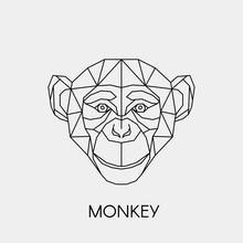 Geometric Monkey. Polygonal Linear Animal Head. Vector Illustration.