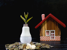 Plant Growing In Light Bulb With House Model On Table.. Investment And Financial Concept