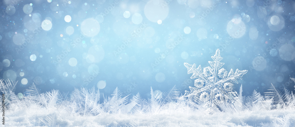 Fototapety, obrazy: Snowflake On Natural Snowdrift Close Up - Christmas And Winter Background