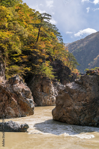 Deurstickers Asia land Ryuyo Gorge canyon Nikko Japan