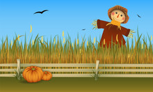 Autumn Harvest. Scarecrow On Field With Two Pumpkins. Vector Banner.