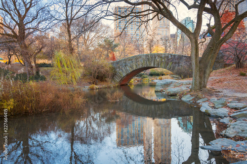 Keuken foto achterwand New York City Central Park. New York. USA in autumn with beautiful fall trees. Gapstow bridge.