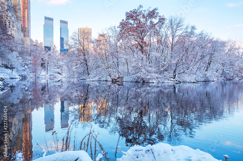 In de dag New York City Central Park. New York. USA in winter covered with snow