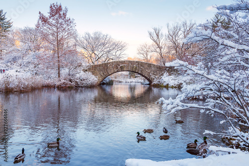 Tuinposter New York City Central Park. New York. USA in winter covered with snow