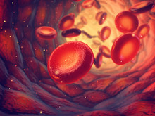 Red Blood Cells Carry Oxygen To All Body Tissues, Blood Transfusion And Donation