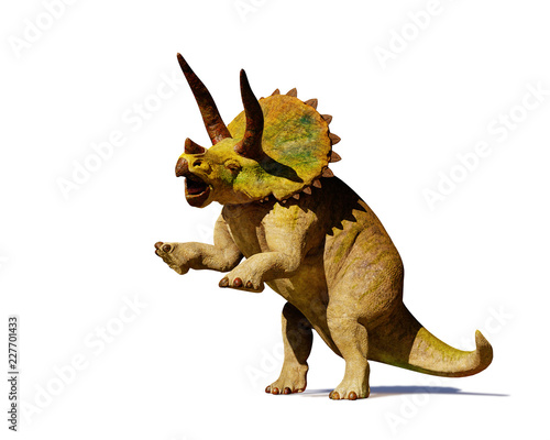 Fotografie, Obraz  Triceratops horridus dinosaur in action (3d rendering isolated with shadow on wh