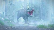 T Rex, Tyrannosaurus Rex Dinosaur Walking Through A Foggy Forest
