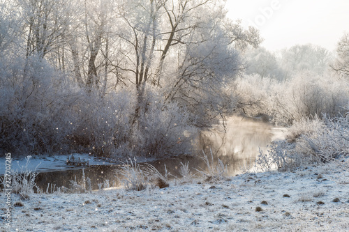 Staande foto Bleke violet Winter landscape - frosty trees in sunny morning. Tranquil winter nature in sunlight