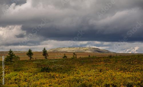 Tuinposter Donkergrijs Kvarkush plateau, landscape paint, Kvarkush, Ural, Russia