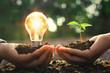 Leinwandbild Motiv hand holding lightbulb with small tree and sunshine. concept energy power in nature