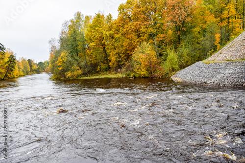Foto op Canvas Herfst Golden autumn forest river shore scene