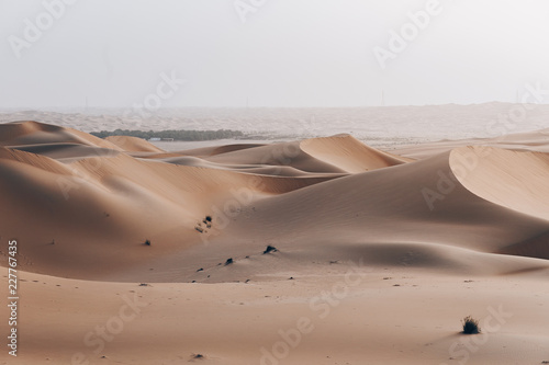 Sunset over Desert Sand Dunes near Dubai