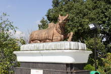 Kailashnath Mahadev Statue Nep...