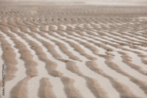 모래사장 물결