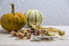 Colorful Ornamental Pumpkins And Gourds Isolated On Marble Background.