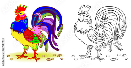 Fantasy illustration of cute rooster. Colorful and black and white page for coloring book. Worksheet for children and adults. Vector cartoon image.
