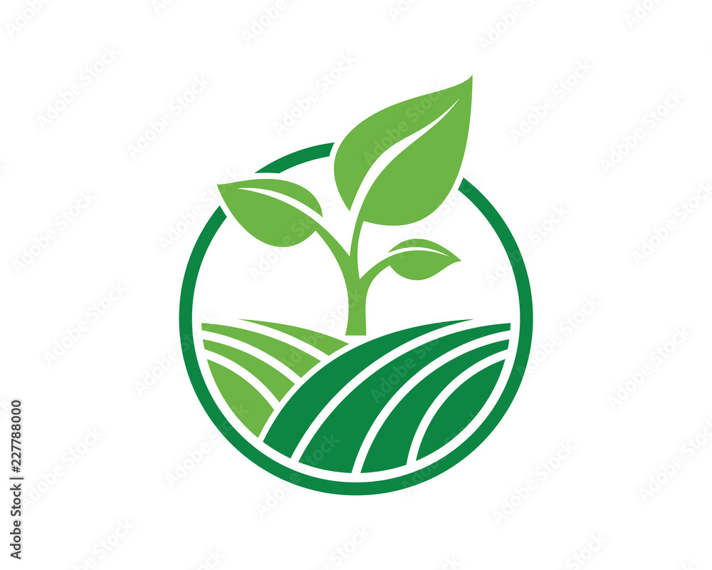 Fototapety, obrazy: Vector Circle Green Leaf Growing Plant Modern Agriculture Sign Symbol Icon Logo Design Inspiration