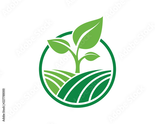 Photo Vector Circle Green Leaf Growing Plant Modern Agriculture Sign Symbol Icon Logo