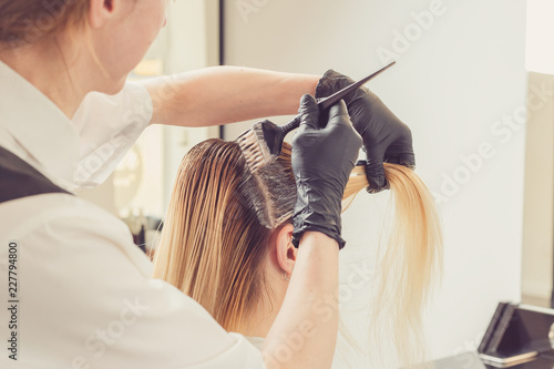 Female stylist applying a dye to the clients hair