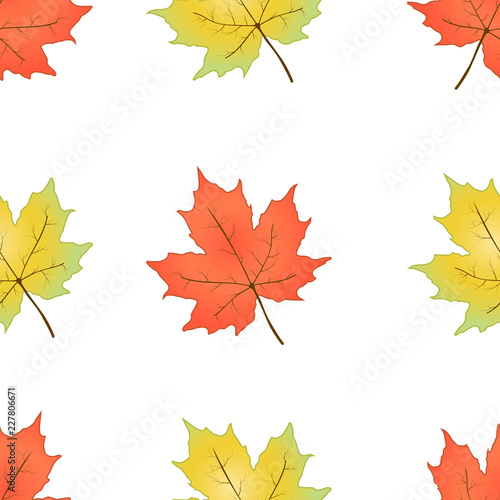 Fototapety, obrazy: Autumn seamless pattern. Maple leaves on a white background. Vector illustration