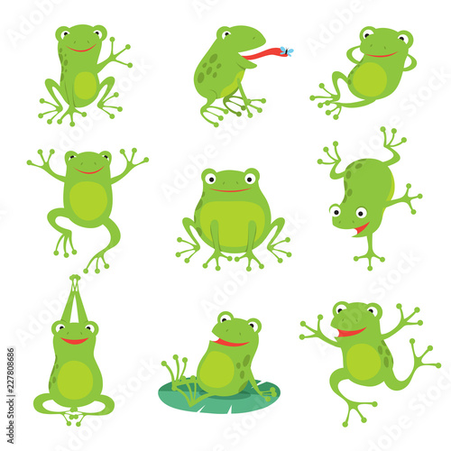 Cute cartoon frogs Canvas-taulu