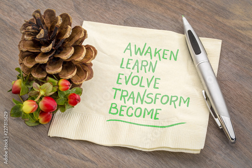 awaken, learn, evolve, transform, become Canvas Print