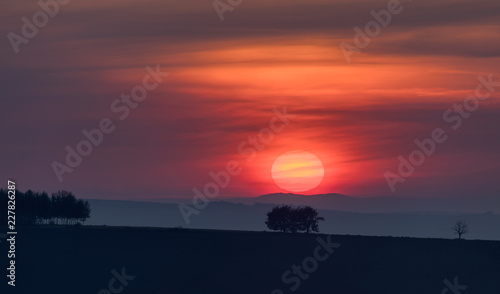 Deurstickers Ochtendgloren Red sunrise with tree silhouettes in Southern Moravia, Czech Republic.
