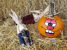 Fun Face Painted On Orange Pumpkin With Indian Corn Decoration On Hay Bale