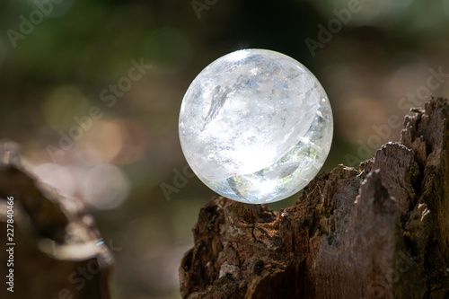 Fotografie, Obraz  Lemurian Clear Quartz Sphere crystal magical orb on moss, bryophyta and bark, rhytidome in forest preserve