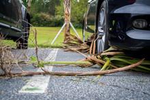 Debris After Hurricane Michael