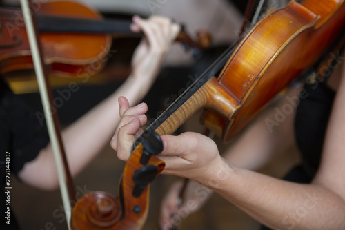 Girl playing the violin  Hand of a girl and a fiddle  - Buy