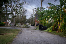 Aftermath Of Hurricane Michael