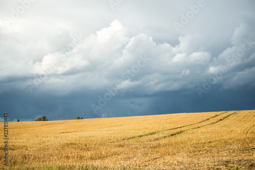 A view of the agricultural field before the rain on a summer day, Latvia