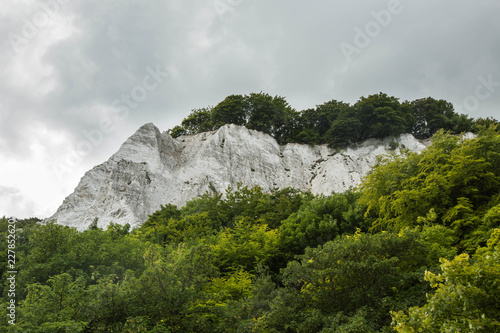 Chalk cliffs covered with trees at the coastline of the Rugen Island near Sassnitz (Mecklenburg-Vorpommern, Germany).
