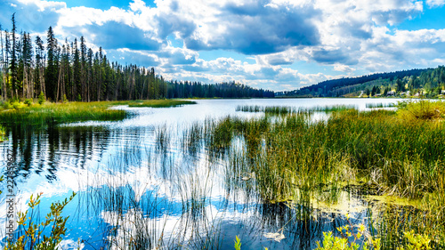 Sky reflecting in Lac Le Jeune - West lake near Kamloops, British Columbia, Canada