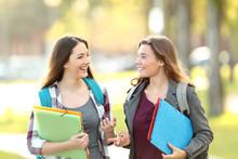 Two Students Talking Walking I...