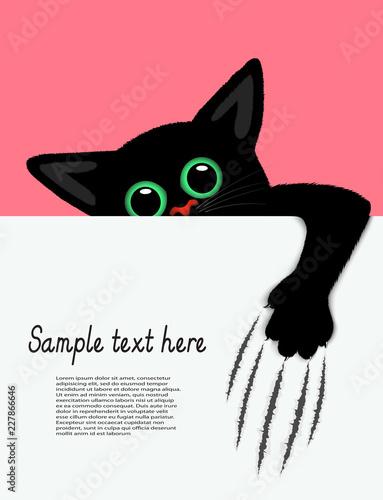 Obraz na plátně playful kitten represents a banner a vector illustration